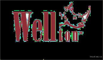 Бренд «Wellton»